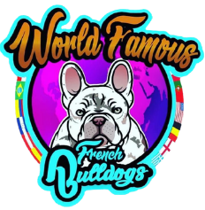 World Famous French Bulldogs